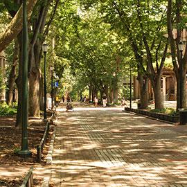 UPenn_campus