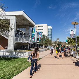 usf_campus